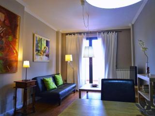 ESPECTACULAR ATICO DUPLEX 2 DORMITORIOS AtB - Salamanca vacation rentals