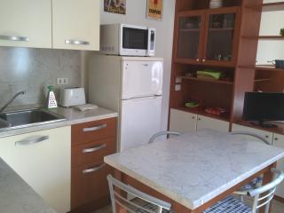 I liutai 1 monolocale - Cremona vacation rentals