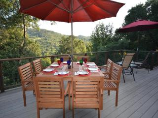 Riverfront Home 5 Minutes from Healdsburg Plaza - Healdsburg vacation rentals