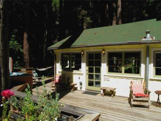 EASY DAYS - Russian River vacation rentals