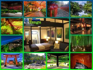 Blue Tengu Sanjusangendo Townhouse - Kinki vacation rentals