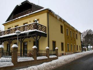 Horni Brusnice Reuzengebergte Appartement - 3 bedrooms - Hradec Kralove Region vacation rentals