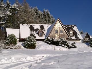 Stupna KSS180 - Spindleruv Mlyn vacation rentals