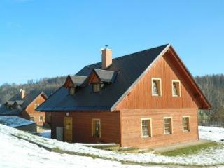 Vakantiehuis Zacler, aan de piste KZA023 - Zacler vacation rentals