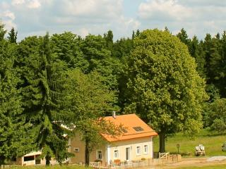 Dum u Lesa Milire 120 - Czech Republic vacation rentals