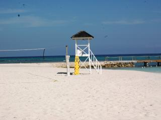 Luxury 1 BdRm Beach Front Apartment - Rose Hall vacation rentals