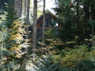Riverview Chalet a Dog Friendly, Sandy Riverfront - Rhododendron vacation rentals