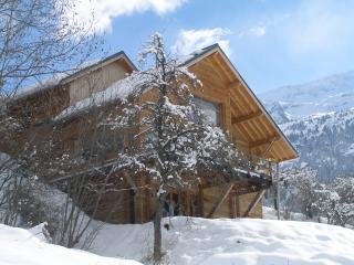 The Vaujany Mountain Lodge - Vaujany vacation rentals