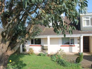 Little Hazelcott on Dartmoor - Manaton vacation rentals