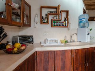 penthouse 5th And 10 Playa Del Carmen - Agua Prieta vacation rentals