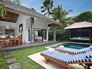 VILLA SAUDARA 1 - PRIME LOCALE, ONLY 75M TO BEACH - Bali vacation rentals