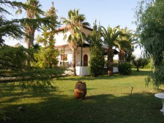 Villa for 9 people in the Aegean Sea - Gerakini vacation rentals