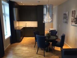 5 star Hotel standard! Near centrum - Norway vacation rentals
