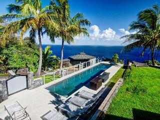 Majestic Cliff House of Waipunalei - Last minute discounts available! - Ookala vacation rentals