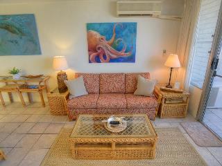 Ocean View One-Bedroom in a Central Location - Kihei vacation rentals