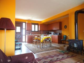 country house in olive grove with Olympus view - Litochoro vacation rentals