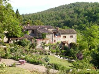 3BR/3BA apartment on Tuscan Estate in the Chianti - Castellina In Chianti vacation rentals