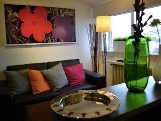 Apartment design 3 minutes Cathedral - Santiago de Compostela vacation rentals