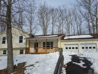 COZY POCONO MOUNTAIN HOME -SLEEPS 2 TO 18+ - Pennsylvania vacation rentals