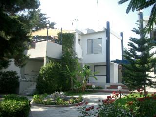 Modern residence-Chanioti-Halkidiki - Hanioti vacation rentals