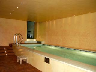 Amazing SPA Apartment in the wineyards_LA ROCCA - Montespertoli vacation rentals