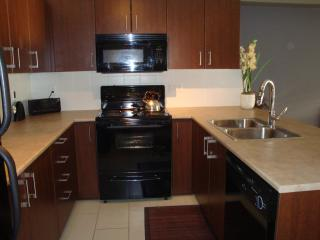 Modern 1 bed & office near Hwy 1. Cleaning incl! - Harrison Hot Springs vacation rentals
