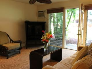 25% off nightly rate in Aug! Aina Nalu D107 - Lahaina vacation rentals
