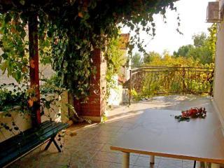 Apartments Stanići - 46721-A3 - Pucisca vacation rentals