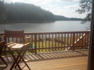 Kelso Lake cabin near Silverwood Theme Park - Hayden vacation rentals