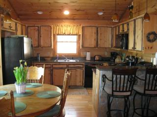 Pine Cone Ridge Cabin - North Georgia Mountains vacation rentals