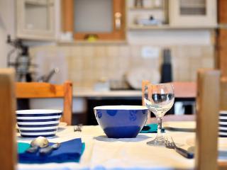 Apartment IVAS A2-blue - Zambratija vacation rentals