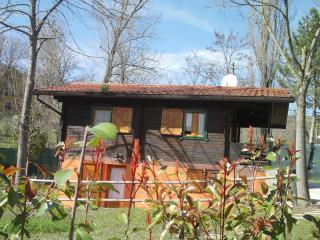Accogliente casa di campagna per famiglie pet frie - Varano de' Melegari vacation rentals
