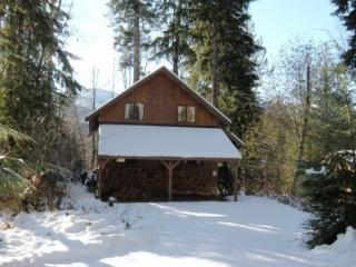 CR101rMapleFalls - Mt. Baker Rim Cabin #44 - A COZY RUSTIC CABIN WITH MODERN CHARM with a Private Hot Tub! - Glacier vacation rentals