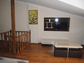 HOTEL - Istanbul vacation rentals