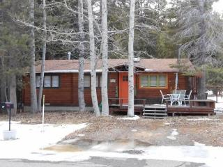 Cozy Tahoe Style Cabin with wifi and close to trail and great mountian biking - South Lake Tahoe vacation rentals