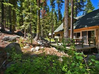 Great Tahoe cabin in the Pines, new back deck, hiking/biking trails close by - Kyburz vacation rentals