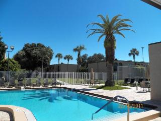 55 + Fully Furnish Condo by Tampa Florida Seminole - Seminole vacation rentals