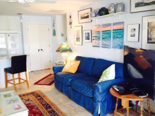 Boca Grande Beachfront Condo - Boca Grande vacation rentals