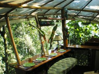 Best Treehouse in Costa Rica/Sleeps 2-8/Ocean View - Puerto Jimenez vacation rentals