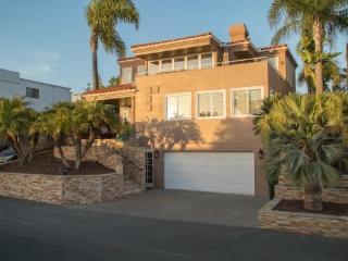 Panoramic Ocean Views! Hot tub, Gym, +Granny Flat - San Diego vacation rentals