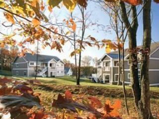 Easy access to Delaware River and Water Gap - East Stroudsburg vacation rentals
