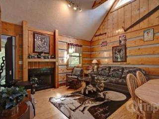 Dances with Wolves - Gatlinburg vacation rentals
