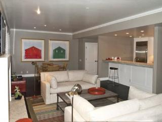 Larkspur #302, Ketchum -Great newly remodeled Luxury condo - Extended Stay Condo - Ketchum vacation rentals