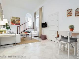 Guzmán El Bueno A, quality in the centre ofSeville - Seville vacation rentals
