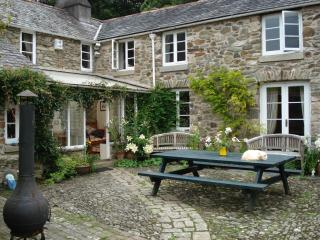 Mount Tavy Cottage - Tavistock vacation rentals