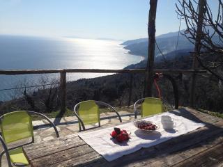 Villa Asterina - Zagora vacation rentals