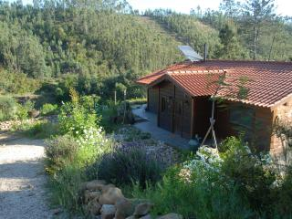 Riverside neighbour free chalet - Beiras vacation rentals
