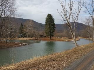 A Beautiful Cabin on Pine Creek - Pennsylvania vacation rentals
