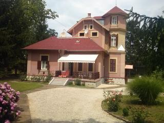 Gabi villa - Siofok vacation rentals