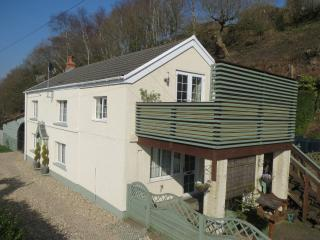 Ensuite Double Room with kitchenette & balcony - Pontardawe vacation rentals